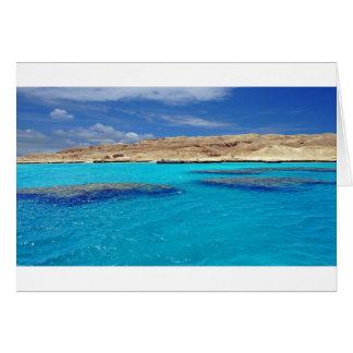 koraal zee briefkaarten 0