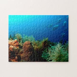 Koraalrif, Droog Tortugas Nationaal Park, Florida Puzzel