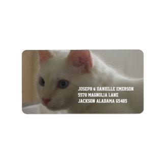 Kostbaar Wit Kat Addressticker