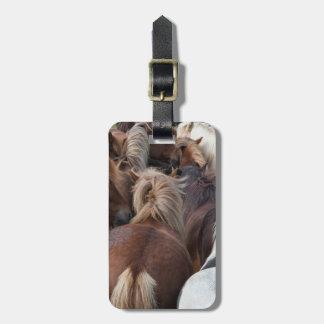 Kudde van Ijslands paard Bagagelabel