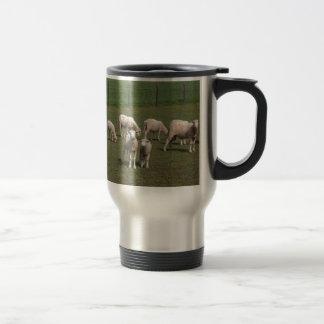 Kudde van schapen reisbeker