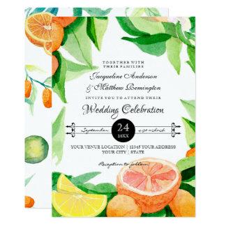 Kumquat van de citrusvrucht Art. van het Blad van Kaart