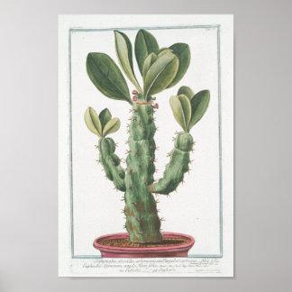 Kunst van het Poster van de vintage Cactus de