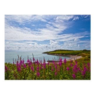 Kustlijn de Noord- van Wales Briefkaart
