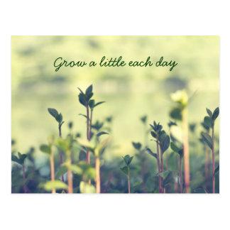 Kweek Greens van de Spruiten van Elke Dag EEN Briefkaart
