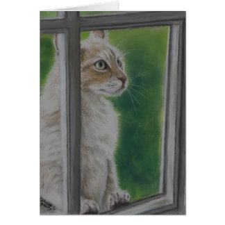 """""""Laat me in"""" het Wenskaart van de kattenkunst"""