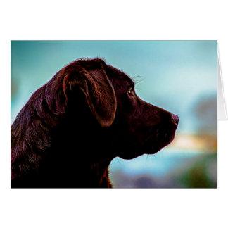 Labrador bij Schemer Wenskaart