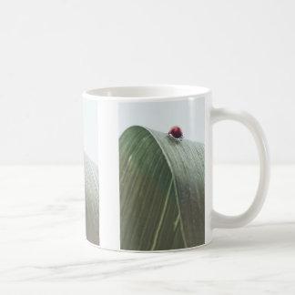 LadyBug Koffiemok