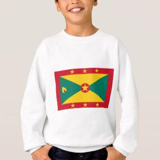 Lage Kosten! De Vlag van Grenada Trui