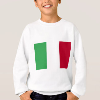 Lage Kosten! De Vlag van Italië Trui