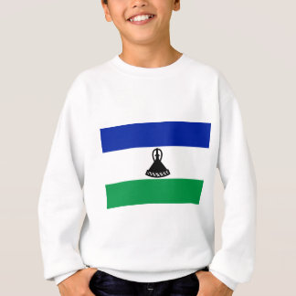 Lage Kosten! De Vlag van Lesotho Trui