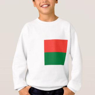 Lage Kosten! De Vlag van Madagascar Trui