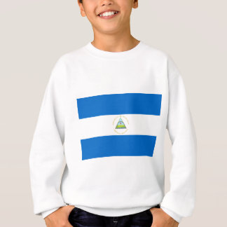 Lage Kosten! De Vlag van Nicaragua Trui