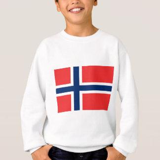 Lage Kosten! De Vlag van Noorwegen Trui