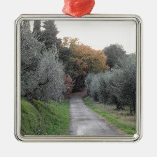 Landelijk landschap met asfaltweg in de herfst zilverkleurig vierkant ornament