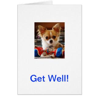 Langharige Chihuahua Briefkaarten 0