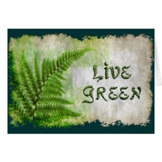 LEEF de GROENE Kaart van de Gift van Eco Enviro