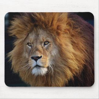 Leeuw Mousemat Muismat