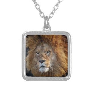 leeuw zilver vergulden ketting