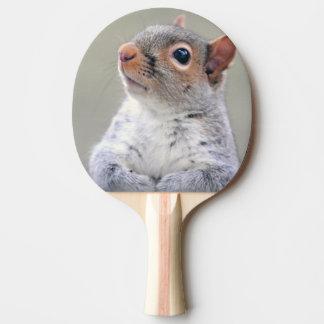 Leuk eekhoornportret tafeltennis bat