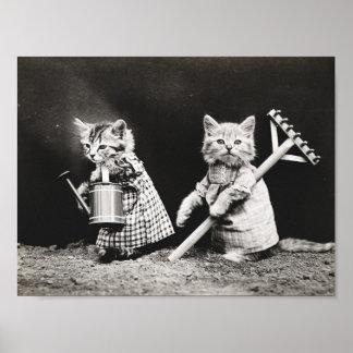 Leuk gekleed katten vintage poster