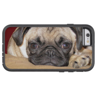 Leuk Pug Puppy Tough Xtreme iPhone 6 Hoesje