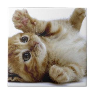 leuk weinig gestreepte kat van de het huisdierenge keramisch tegeltje