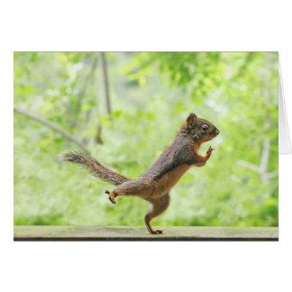 Leuke Eekhoorn die Tai Chi doen Kaart