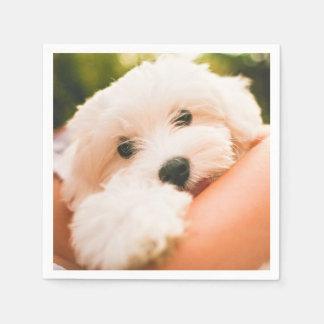 Leuke & Grappige het document van de Hond Wegwerp Servetten
