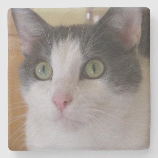 Leuke Grijze en Witte Kat Stenen Onderzetter