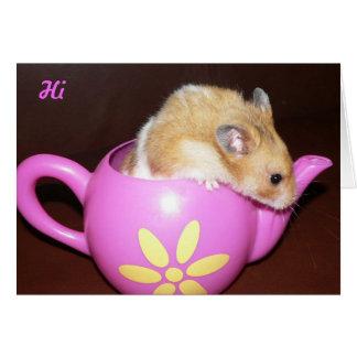 Leuke Hamster Briefkaarten 0