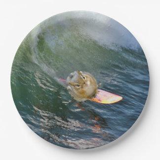 Leuke het Surfen Aardeekhoorn Papieren Bordje
