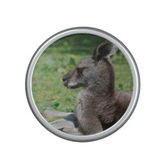 Leuke Kangoeroe Bluetooth Luidspreker