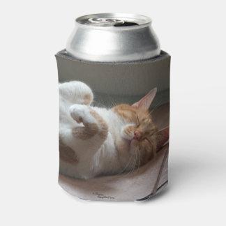 Leuke Katten die Koelbox slapen Blikjeskoeler