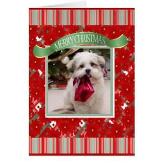 Leuke Kerstmis van de Hond van de Douane Briefkaarten 0