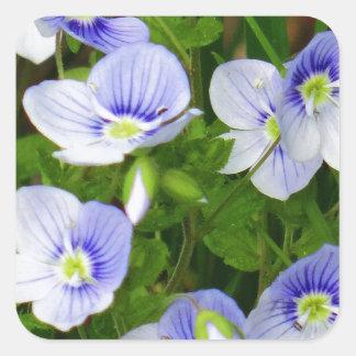Leuke, kleine blauwe bloemen vierkante sticker