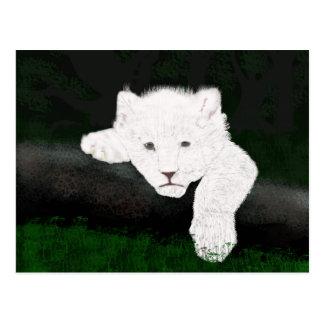 leuke leeuw briefkaart