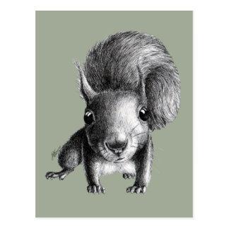 Leuke Nieuwsgierige Eekhoorn Briefkaart