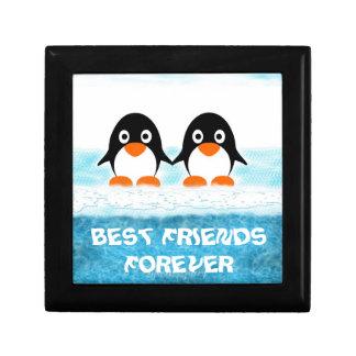 Leuke Penquin op de doos-Beste Vrienden van de Decoratiedoosje