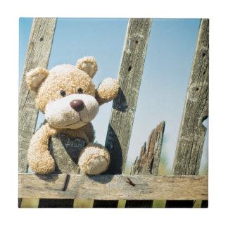 Leuke Teddy Tegeltje Vierkant Small