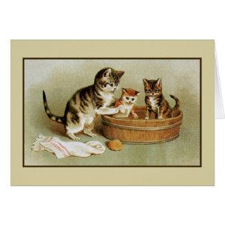 Leuke Victoriaans kat het baden katjes in badton Briefkaarten 0