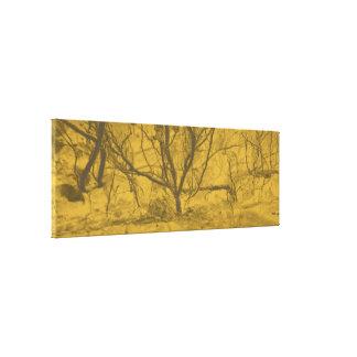 """Licht in Duisternis"" ""zwarte en gouden abstracte Canvas Print"