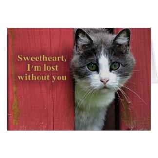 Liefje word ik verloren zonder u, Leuke Kat Briefkaarten 0