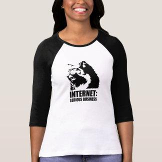 lolcat is Internet ernstige zaken T Shirt