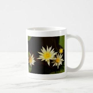 lotusbloem bloem koffiemok