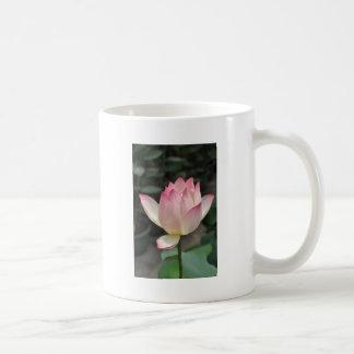 lotusbloem koffiemok
