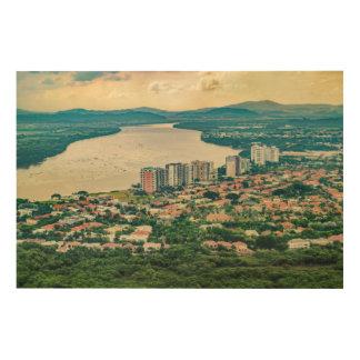 Lucht Uitzicht van Guayaquil Outskirt van Hout Afdruk