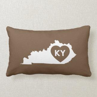 Lumbaal Hoofdkussen I de Staat van Kentucky van de Lumbar Kussen
