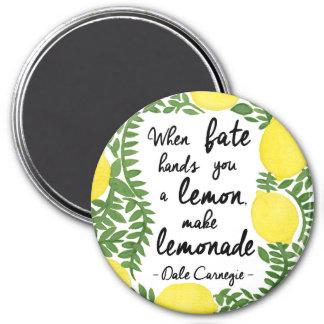 Maak Limonade Magneet