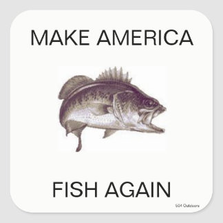 Maak opnieuw de Sticker van de Vissen van Amerika